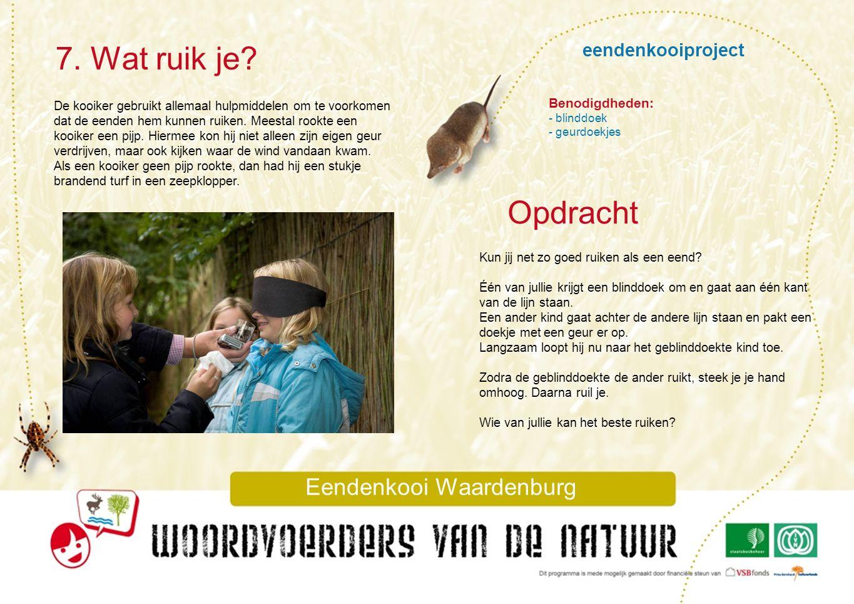 Eendenkooi Waardenburg