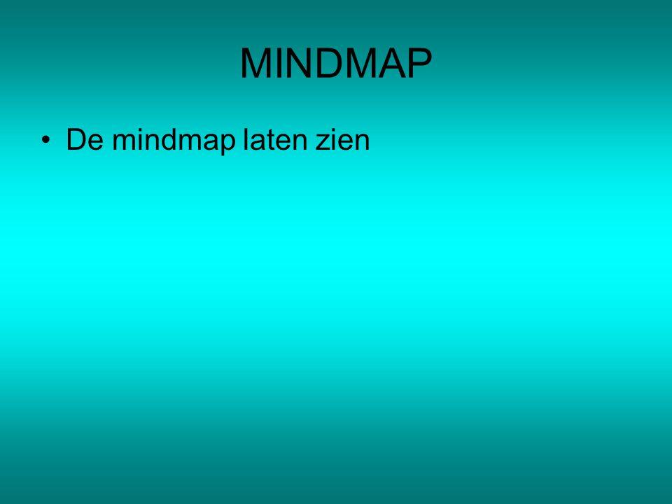 MINDMAP De mindmap laten zien