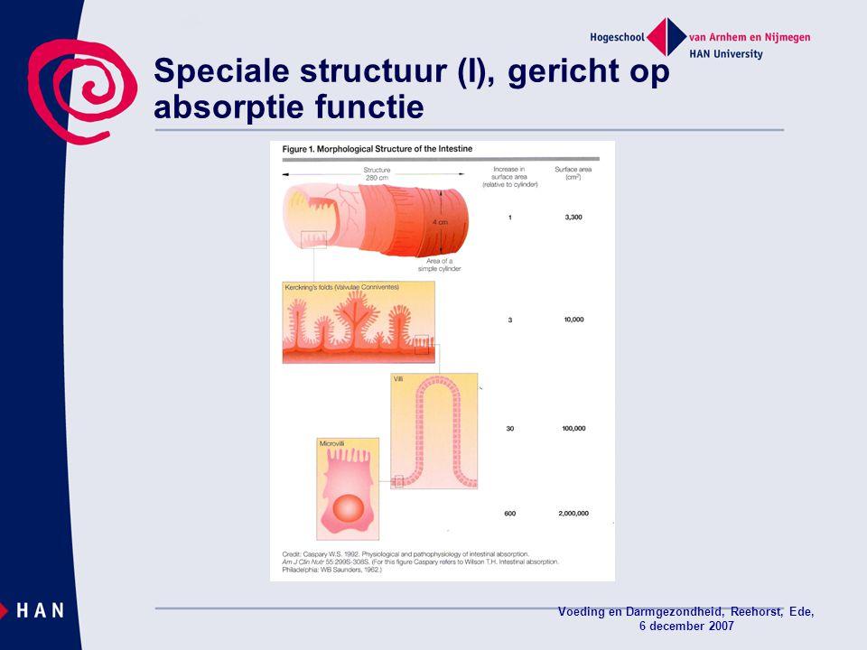 Speciale structuur (I), gericht op absorptie functie
