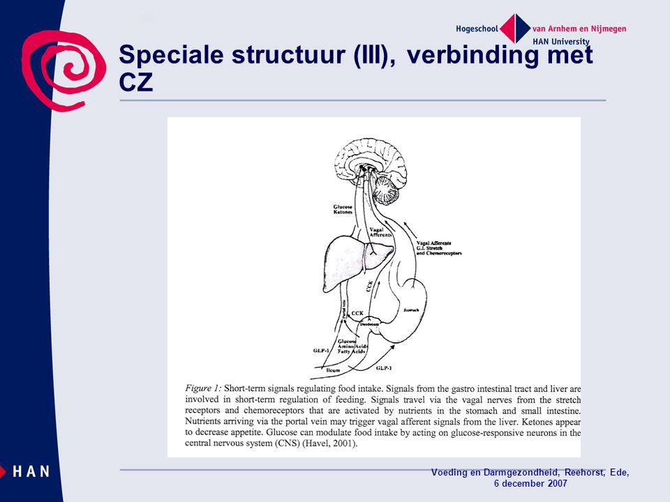 Speciale structuur (III), verbinding met CZ