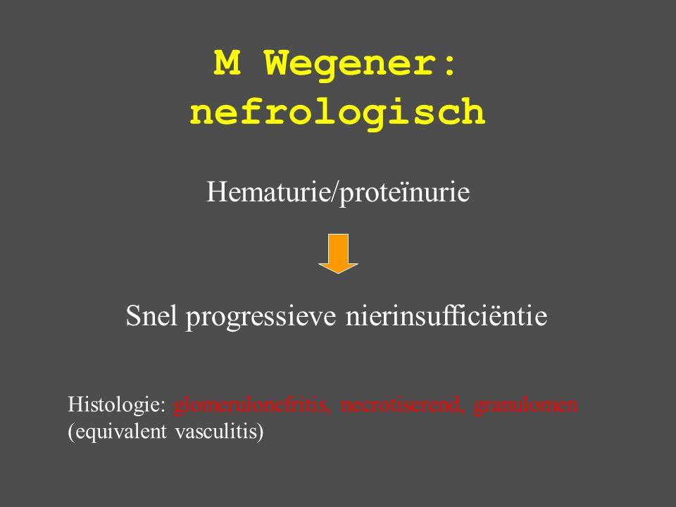 M Wegener: nefrologisch