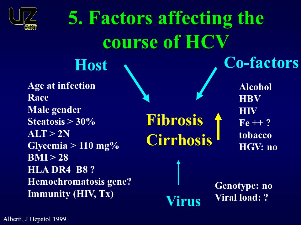 5. Factors affecting the course of HCV