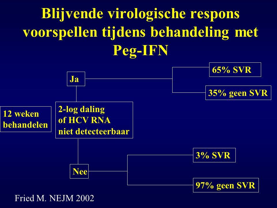 Blijvende virologische respons voorspellen tijdens behandeling met Peg-IFN