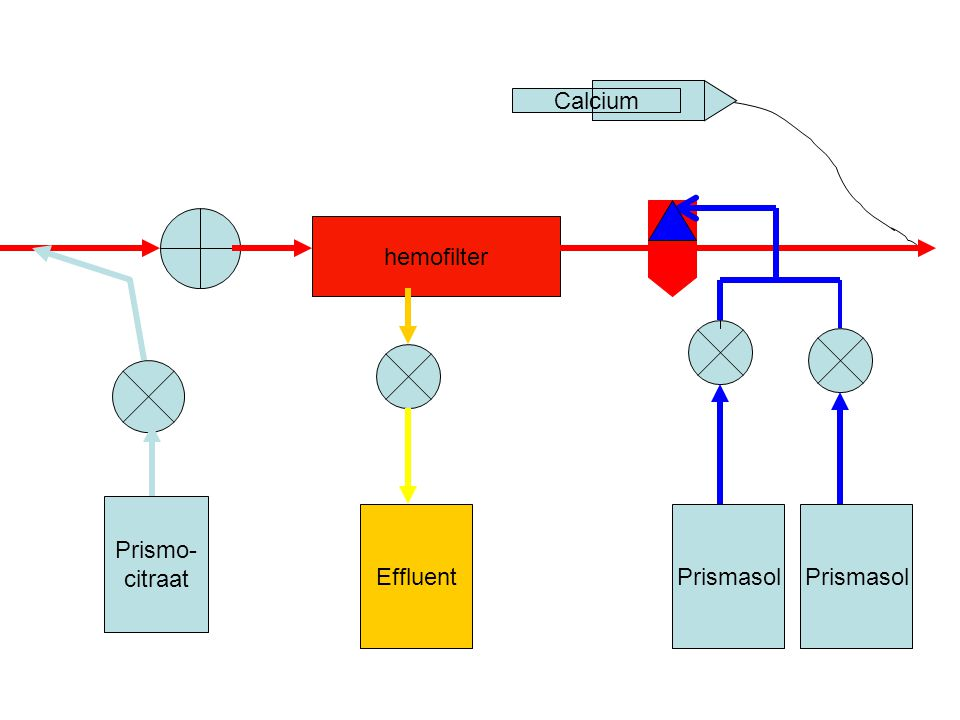 Calcium hemofilter Prismo- citraat Effluent Prismasol Prismasol