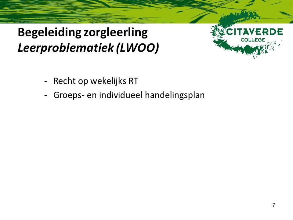 Begeleiding zorgleerling Leerproblematiek (LWOO)