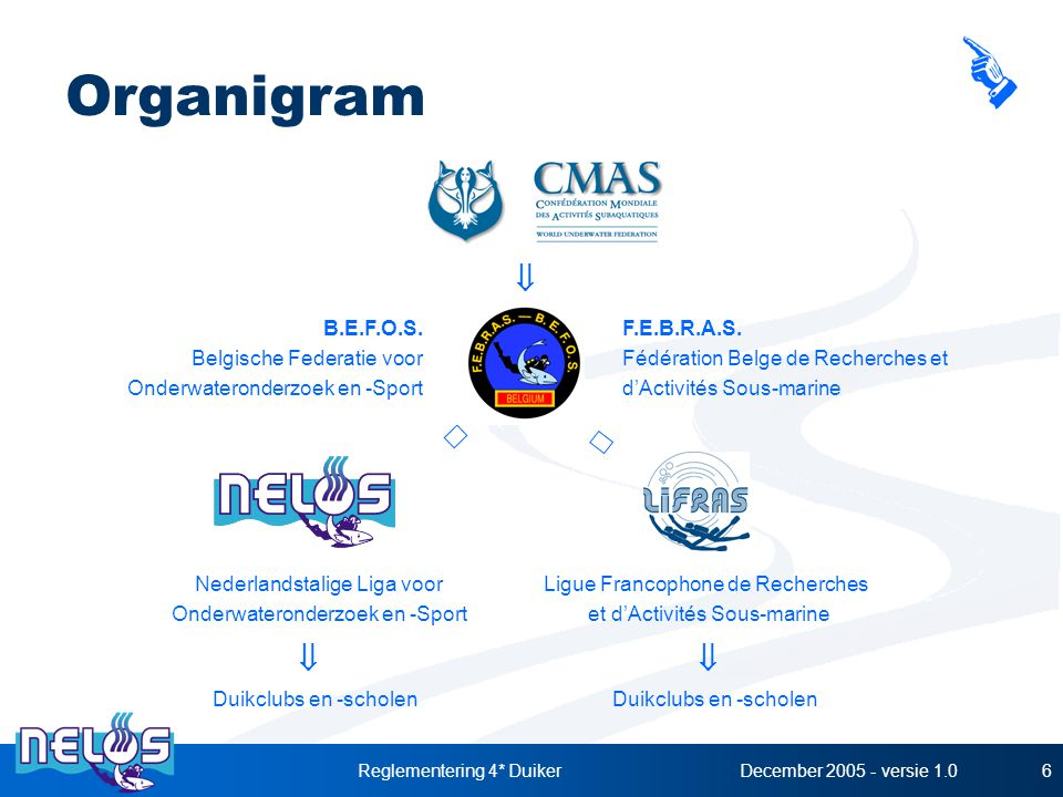 Organigram ß ß ß ß ß B.E.F.O.S. Belgische Federatie voor