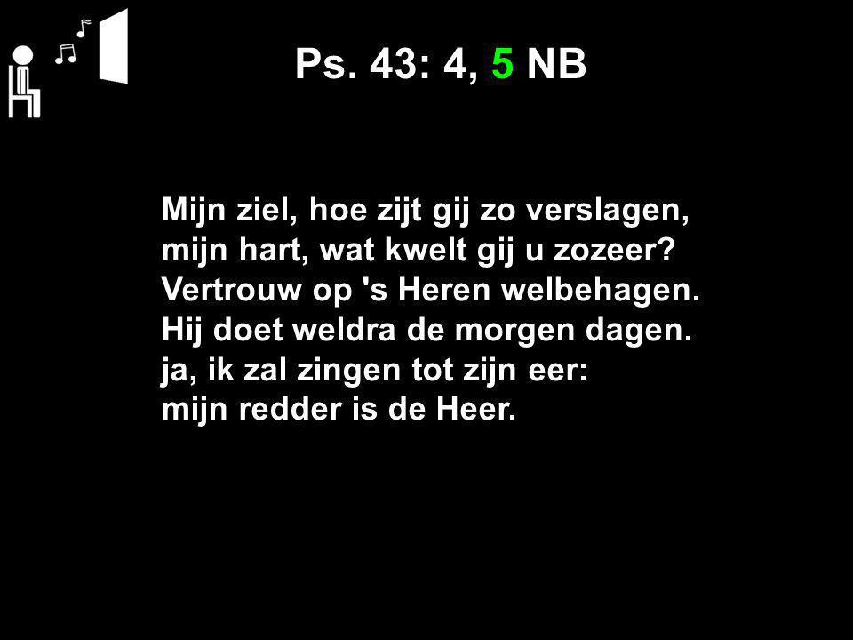 Ps. 43: 4, 5 NB