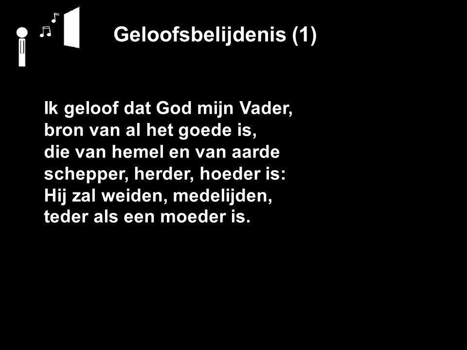 Geloofsbelijdenis (1) Ik geloof dat God mijn Vader,