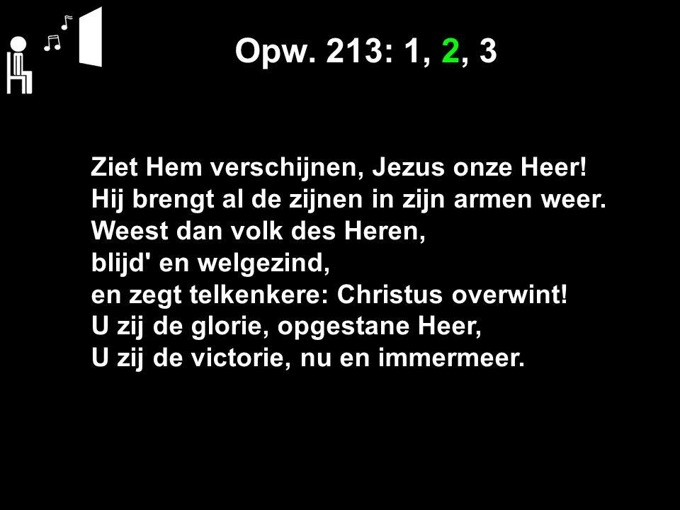 Opw. 213: 1, 2, 3 Ziet Hem verschijnen, Jezus onze Heer!