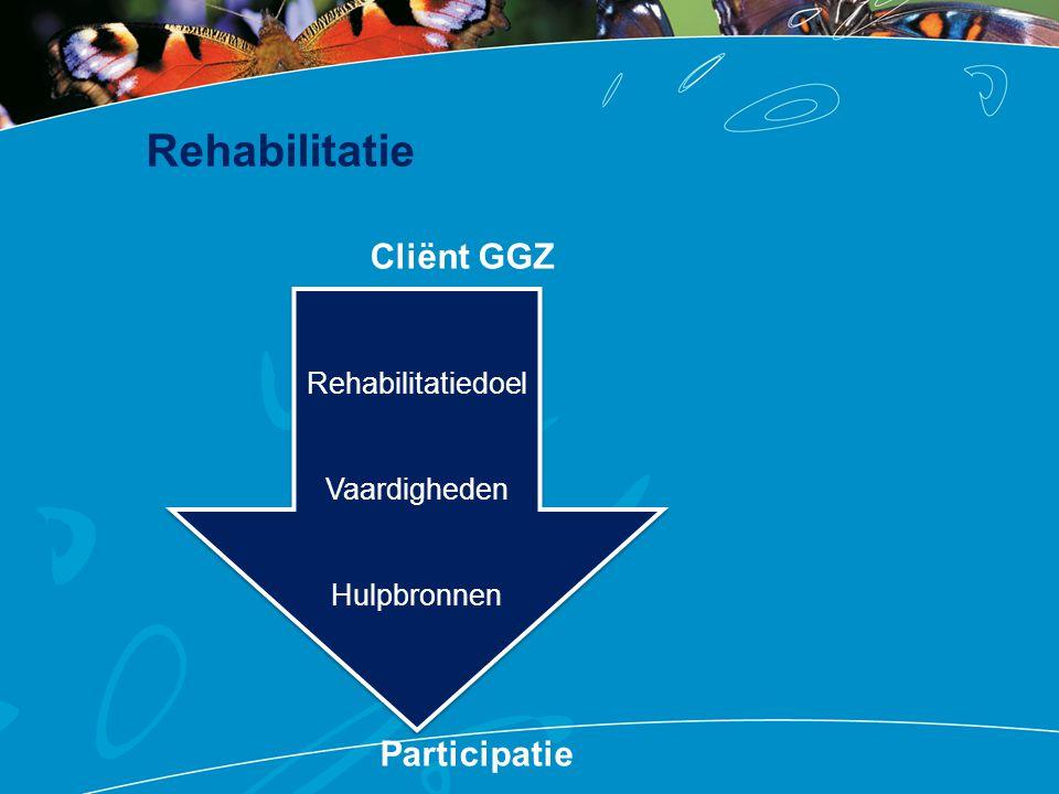 Rehabilitatie Cliënt GGZ Participatie Rehabilitatiedoel Vaardigheden