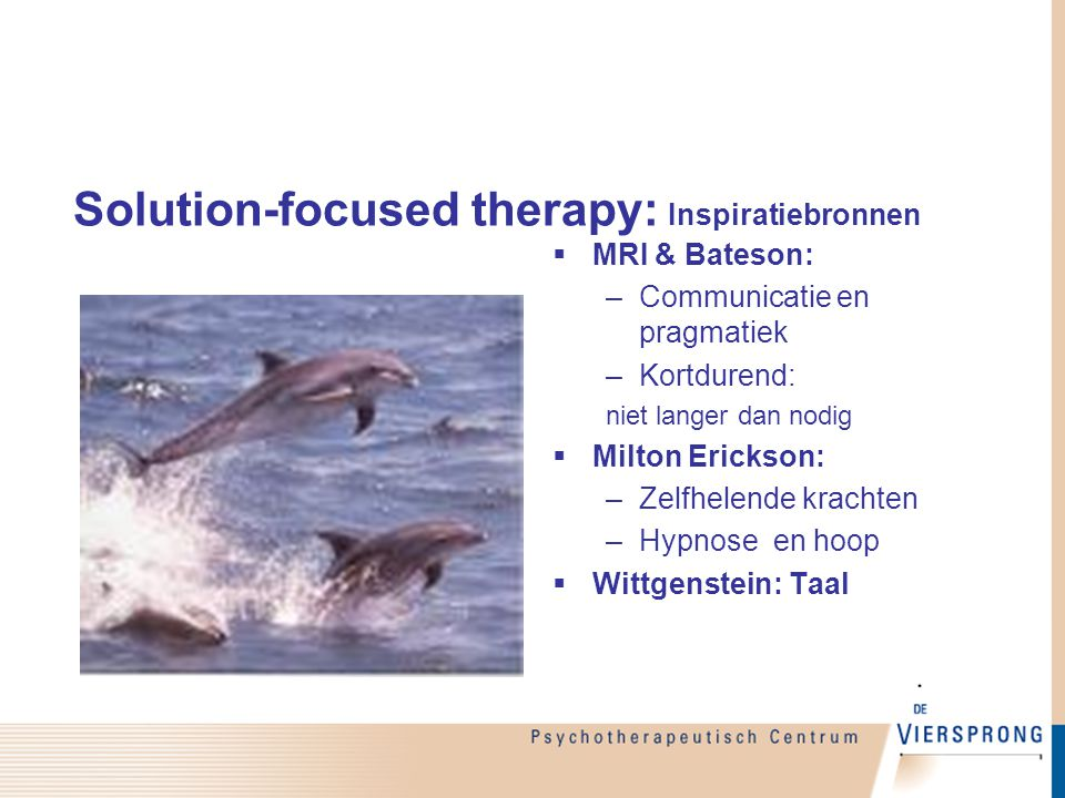 Solution-focused therapy: Inspiratiebronnen: