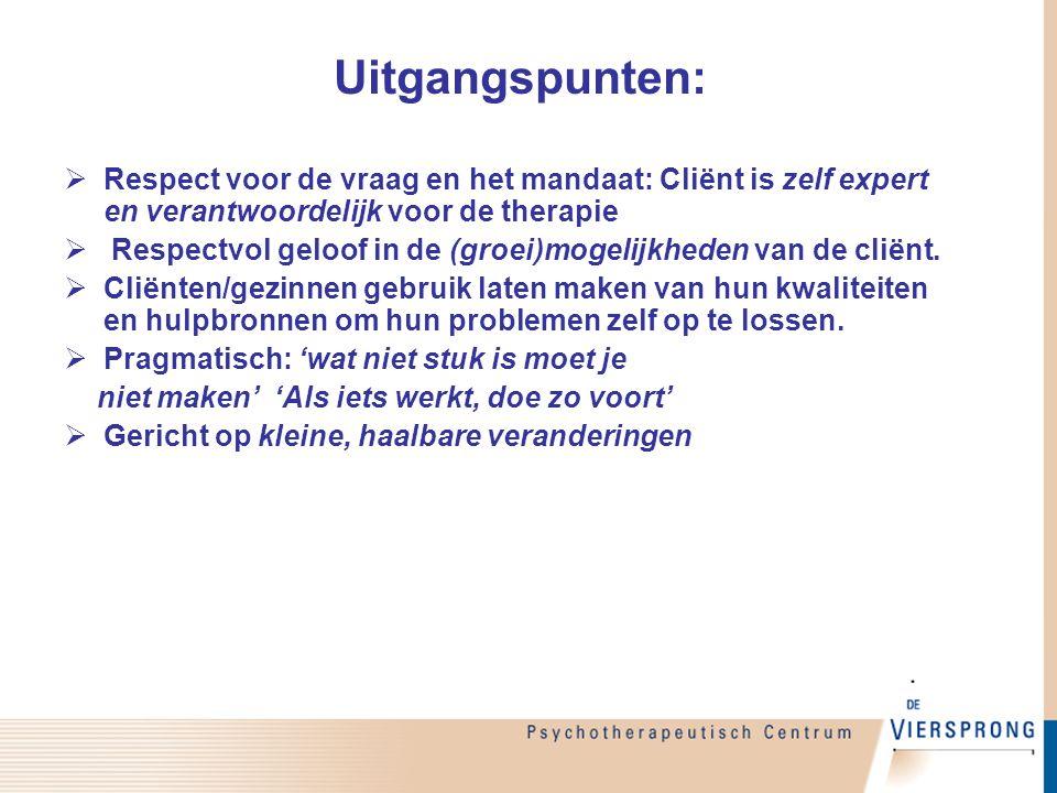 Uitgangspunten: Respect voor de vraag en het mandaat: Cliënt is zelf expert en verantwoordelijk voor de therapie.
