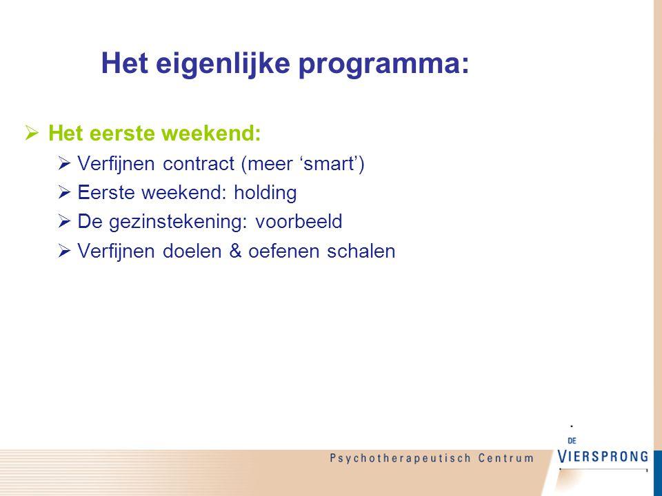 Het eigenlijke programma: