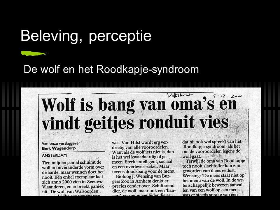 Beleving, perceptie De wolf en het Roodkapje-syndroom