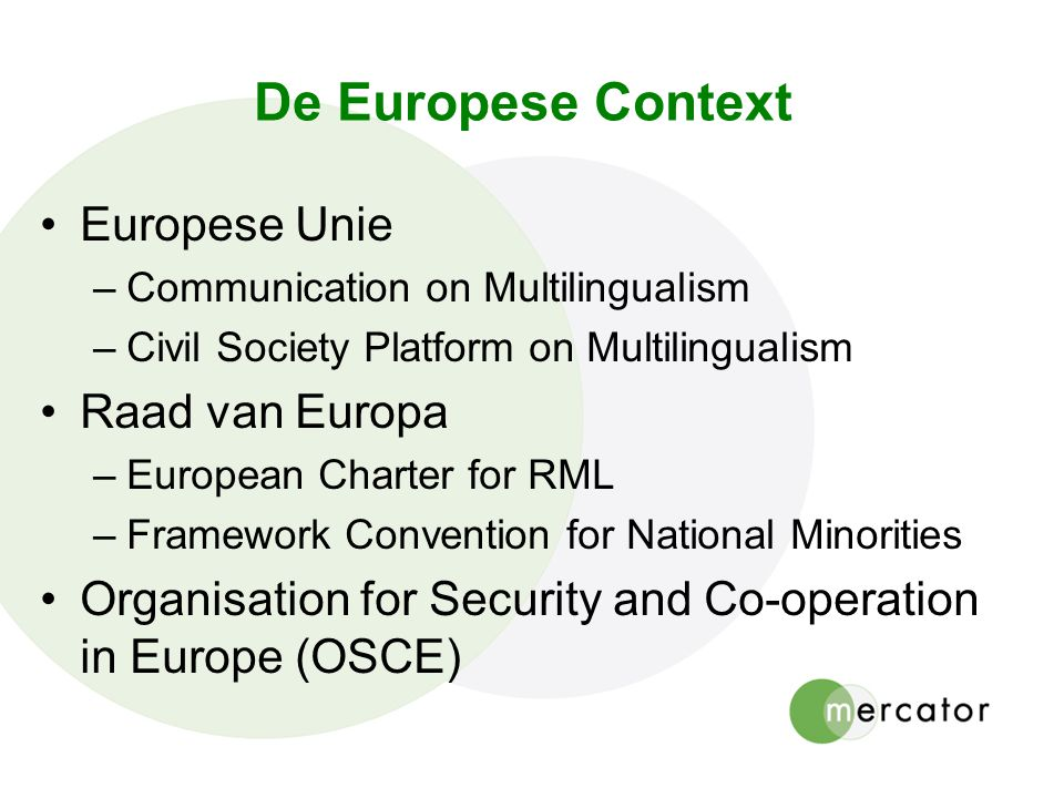 De Europese Context Europese Unie Raad van Europa
