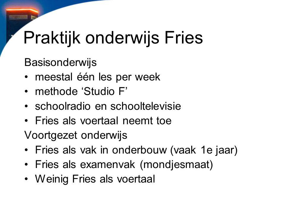 Praktijk onderwijs Fries
