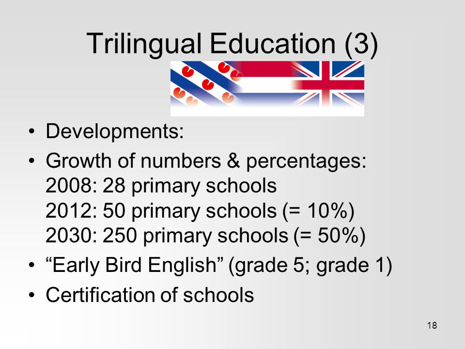 Trilingual Education (3)