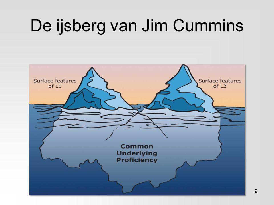 De ijsberg van Jim Cummins