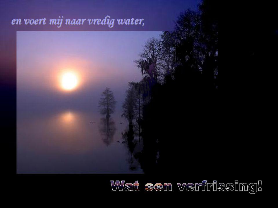 en voert mij naar vredig water,