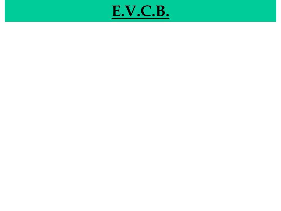 E.V.C.B. EVCB