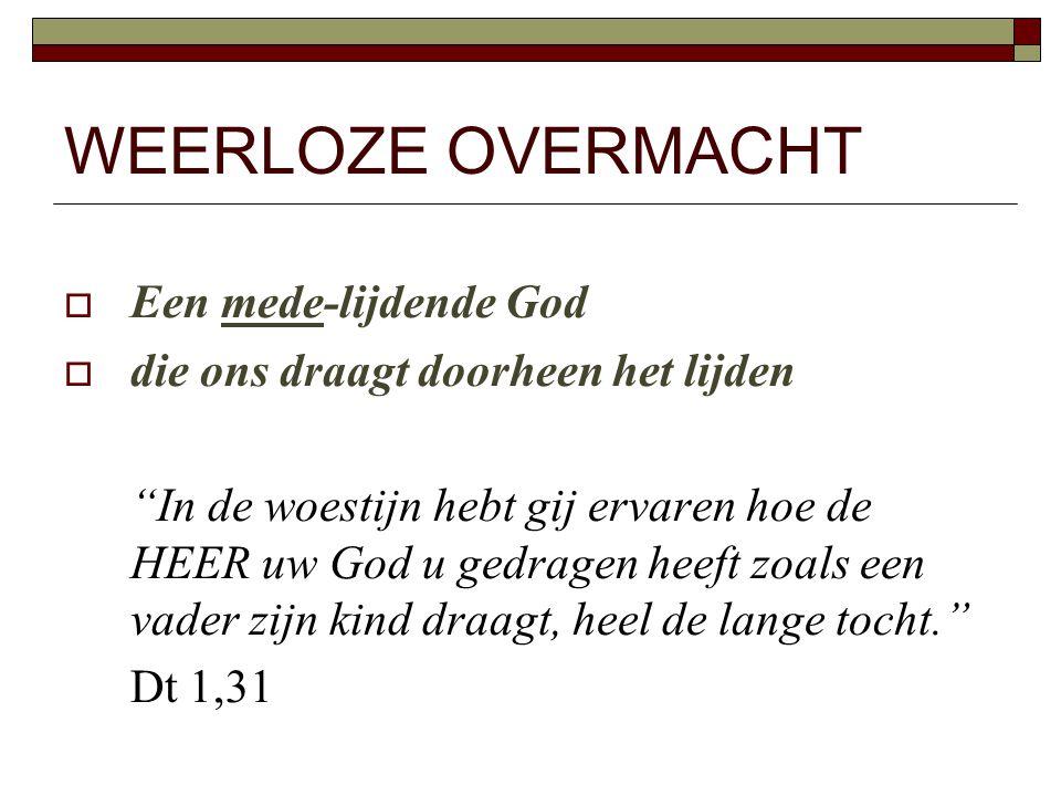 WEERLOZE OVERMACHT Een mede-lijdende God