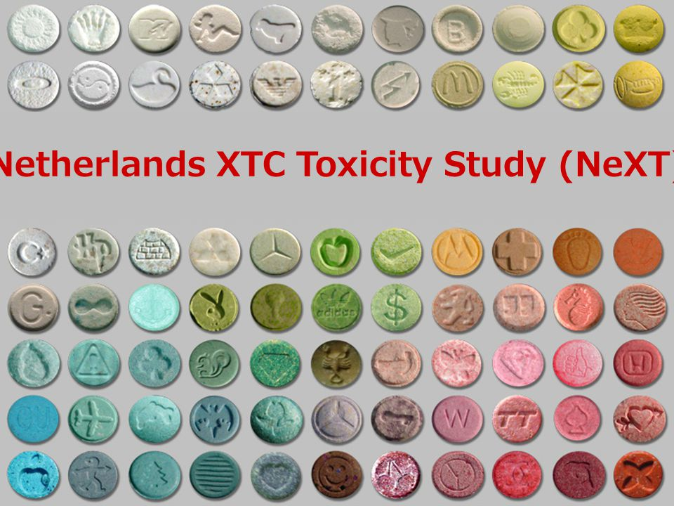 Netherlands XTC Toxicity Study (NeXT)