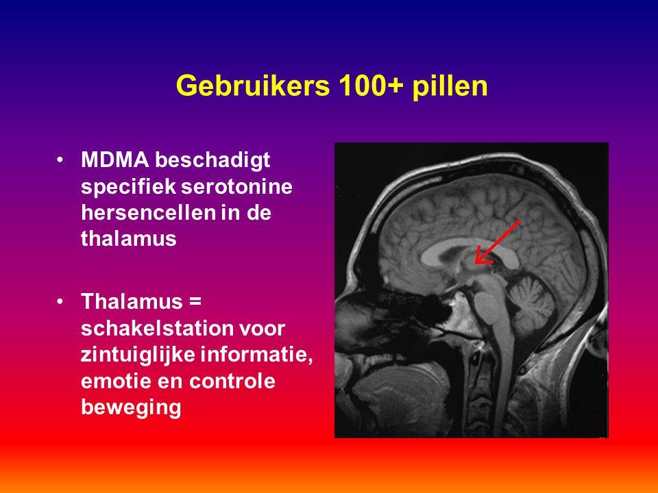 Gebruikers 100+ pillen MDMA beschadigt specifiek serotonine hersencellen in de thalamus.