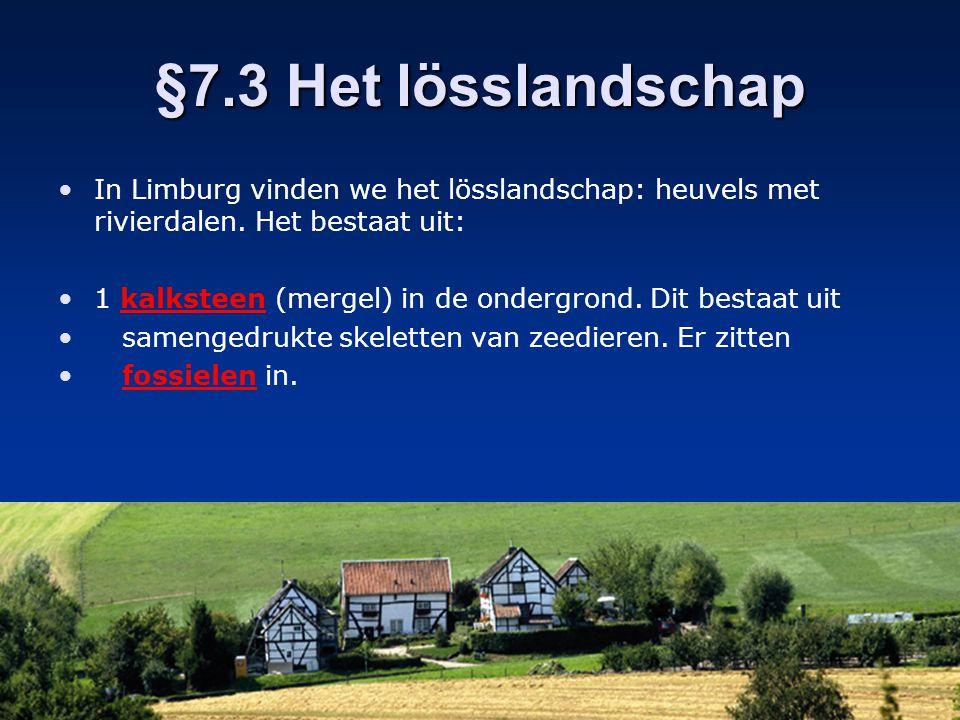 §7.3 Het lösslandschap In Limburg vinden we het lösslandschap: heuvels met rivierdalen. Het bestaat uit: