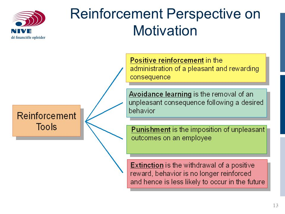 Reinforcement Perspective on Motivation