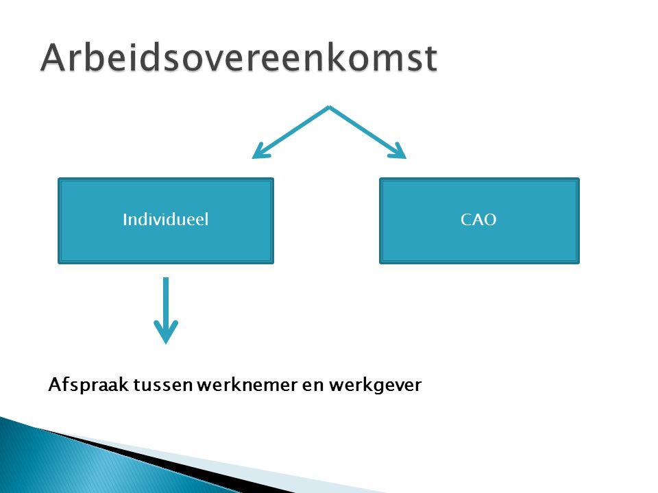 Arbeidsovereenkomst Afspraak tussen werknemer en werkgever Individueel