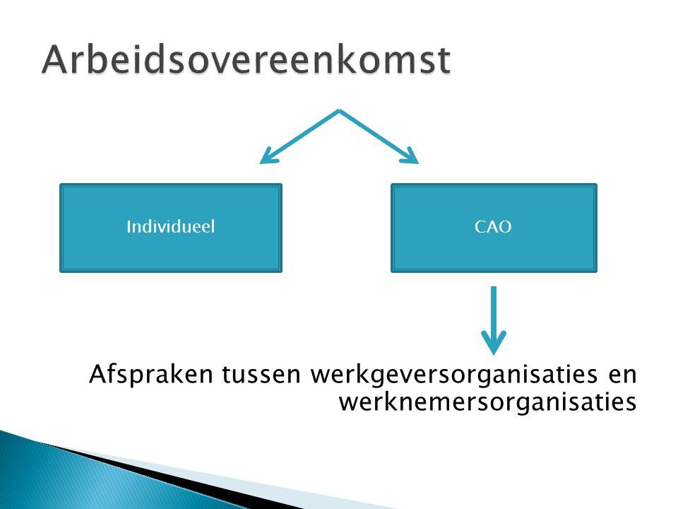 Arbeidsovereenkomst Afspraken tussen werkgeversorganisaties en werknemersorganisaties. Individueel.
