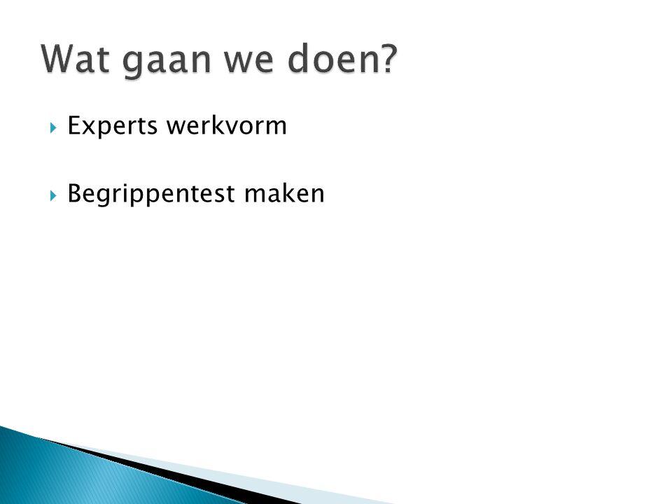 Wat gaan we doen Experts werkvorm Begrippentest maken