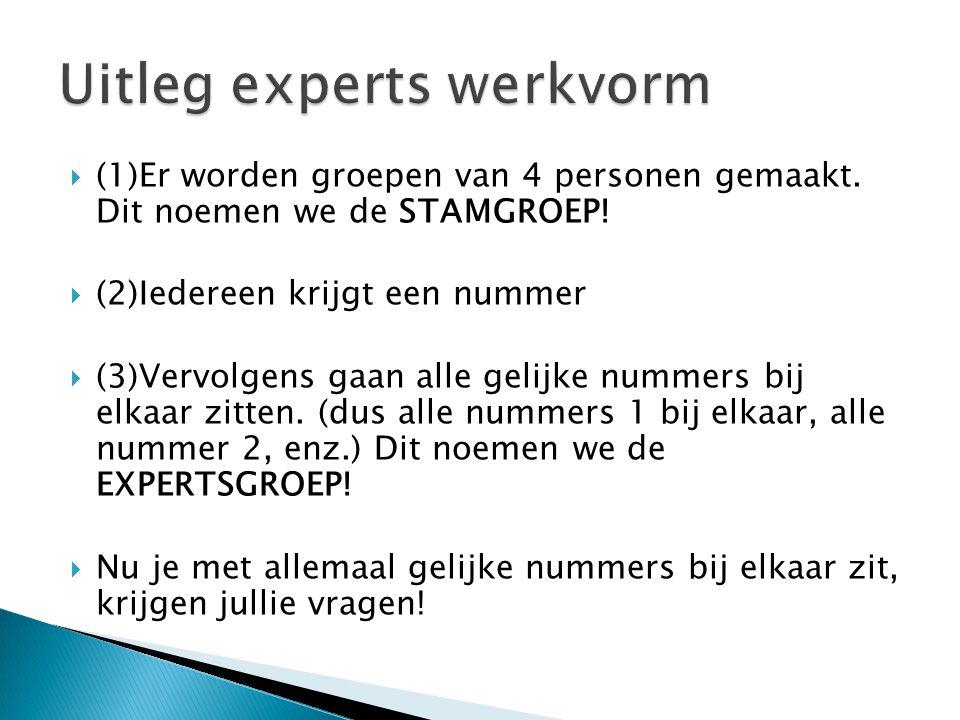 Uitleg experts werkvorm