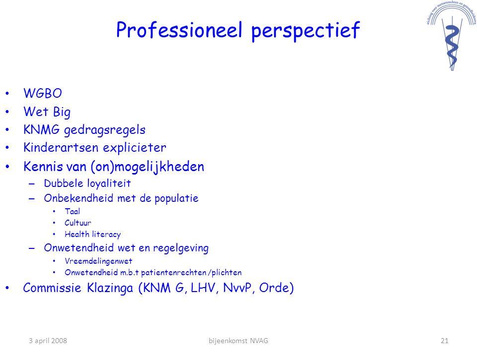 Professioneel perspectief
