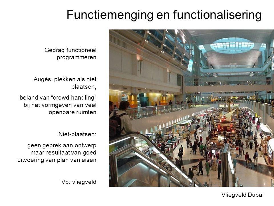 Functiemenging en functionalisering