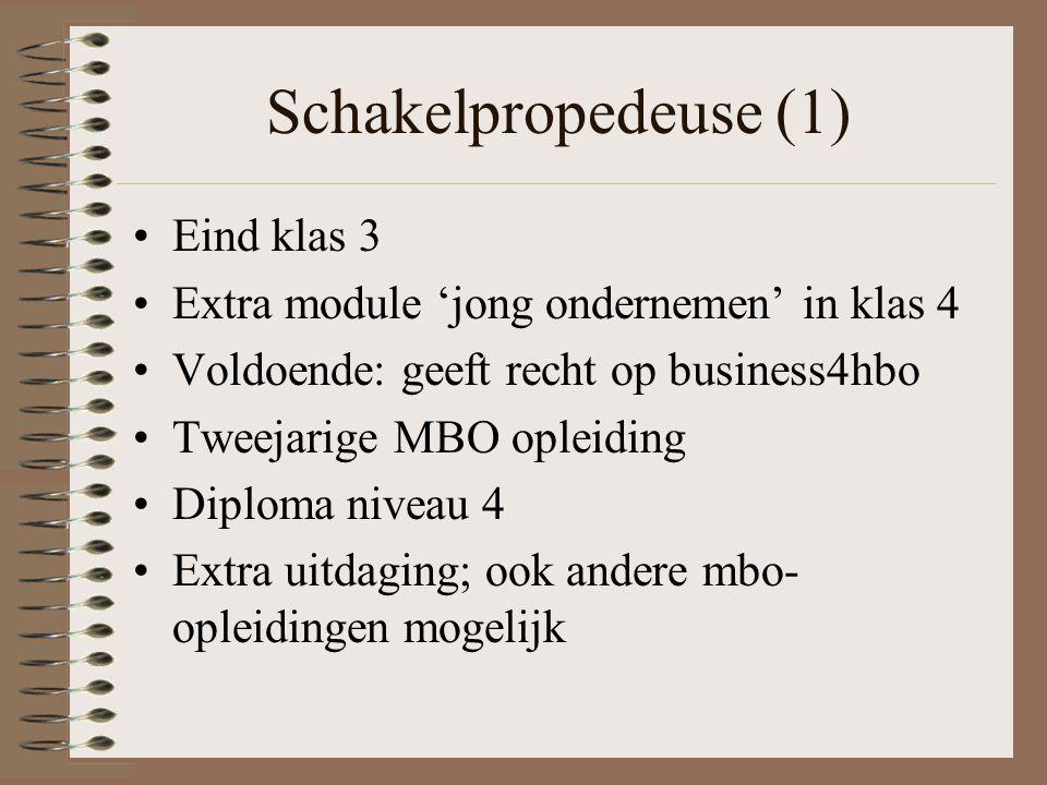 Schakelpropedeuse (1) Eind klas 3