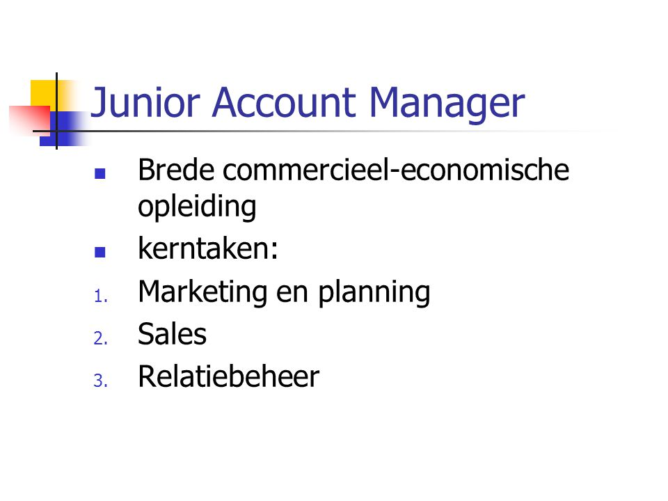 Junior Account Manager