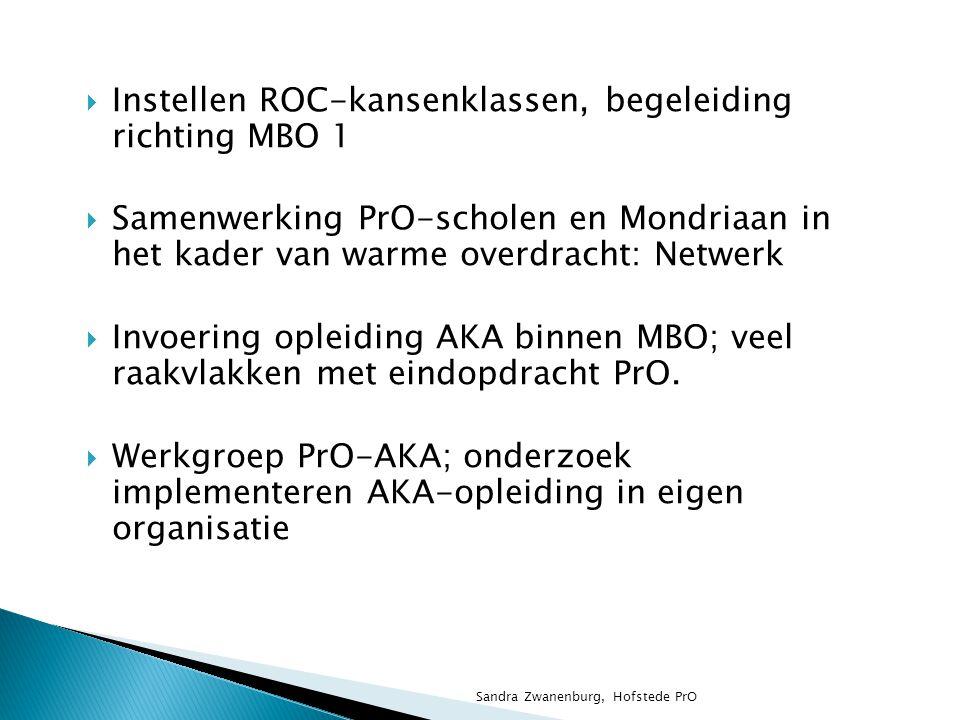 Instellen ROC-kansenklassen, begeleiding richting MBO 1
