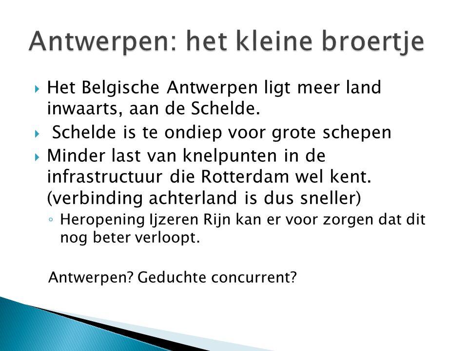 Antwerpen: het kleine broertje