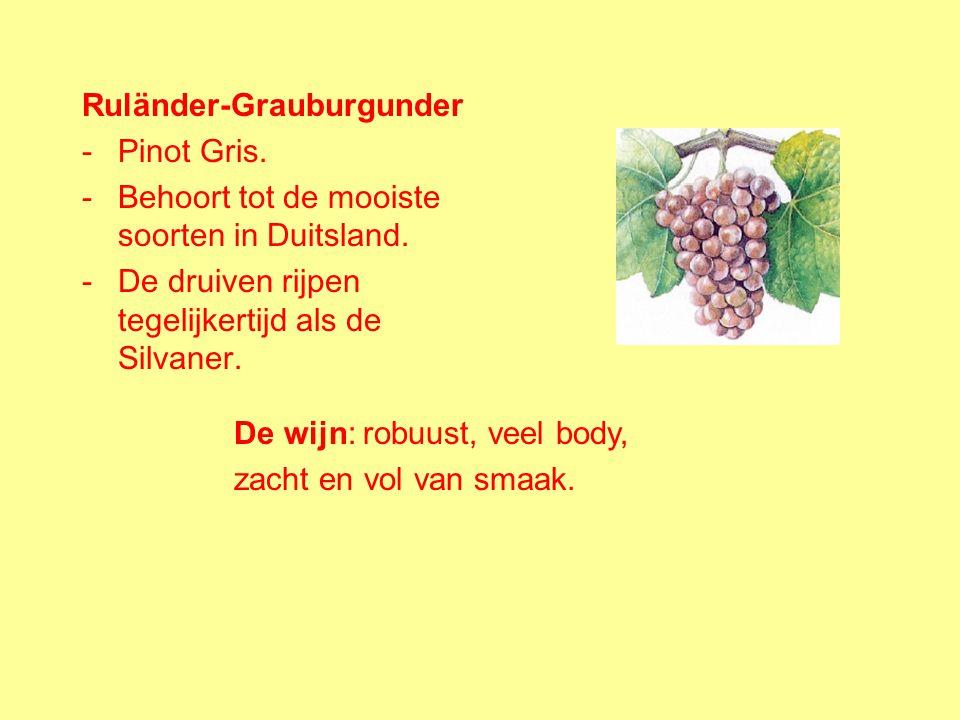 Ruländer-Grauburgunder