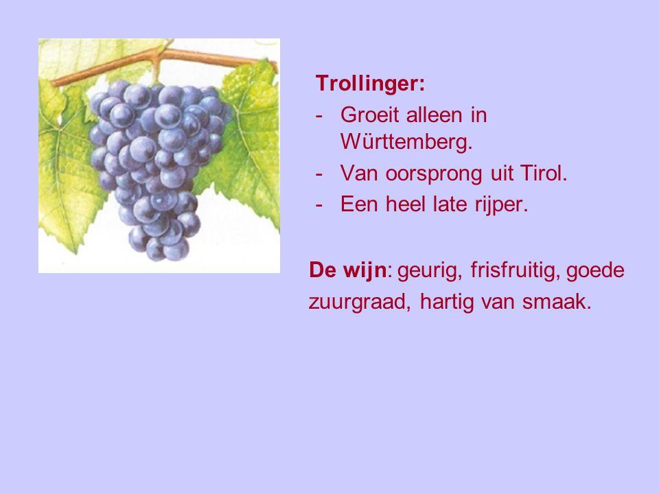 Trollinger: Groeit alleen in Württemberg. Van oorsprong uit Tirol. Een heel late rijper. De wijn: geurig, frisfruitig, goede.
