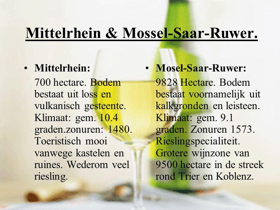 Mittelrhein & Mossel-Saar-Ruwer.