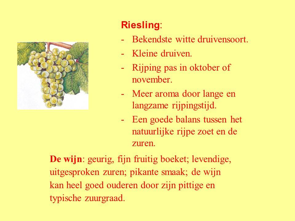 Riesling: Bekendste witte druivensoort. Kleine druiven. Rijping pas in oktober of november. Meer aroma door lange en langzame rijpingstijd.