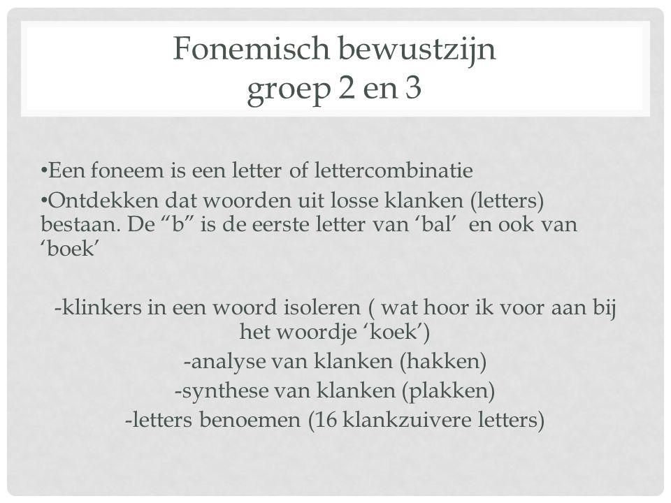 Fonemisch bewustzijn groep 2 en 3
