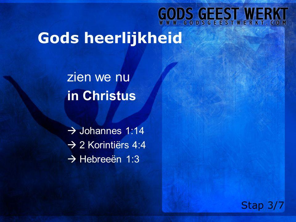 Gods heerlijkheid zien we nu in Christus  Johannes 1:14