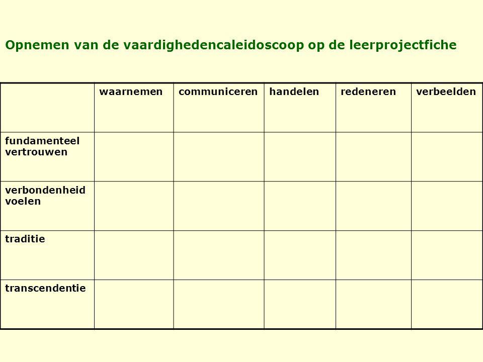 Opnemen van de vaardighedencaleidoscoop op de leerprojectfiche