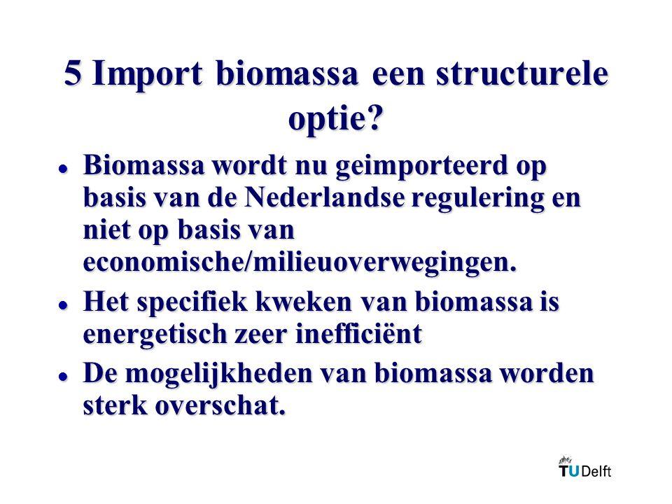 5 Import biomassa een structurele optie