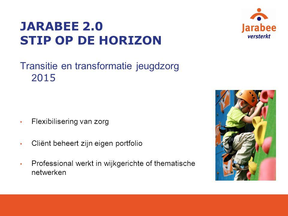 JARABEE 2.0 STIP OP DE HORIZON