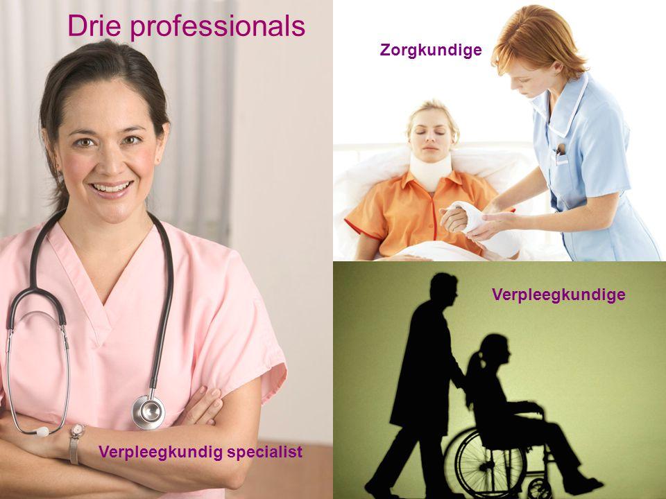 Drie professionals Zorgkundige Verpleegkundige