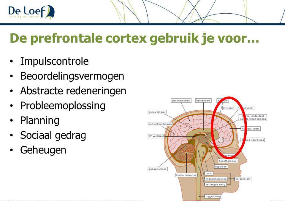 De prefrontale cortex gebruik je voor…